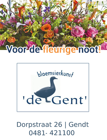 2018 Advertentie Dynamic De Gent